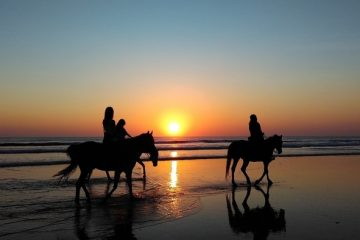 Met paard naar Spanje